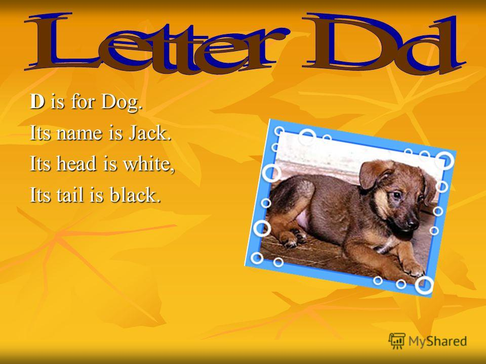 D is for Dog. Its name is Jack. Its head is white, Its tail is black.