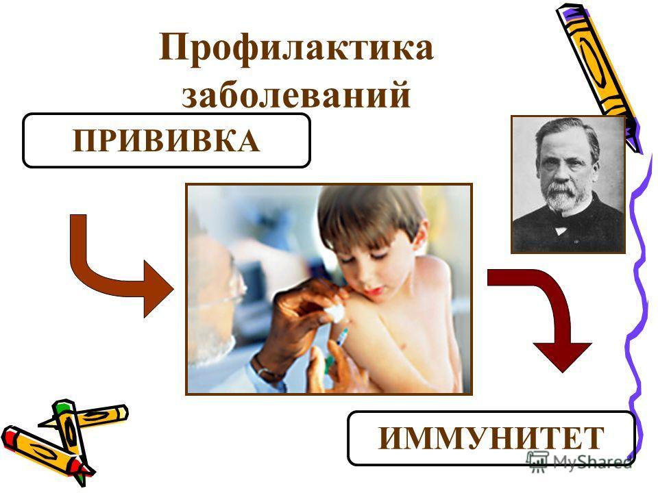 Профилактика заболеваний ПРИВИВКА ИММУНИТЕТ