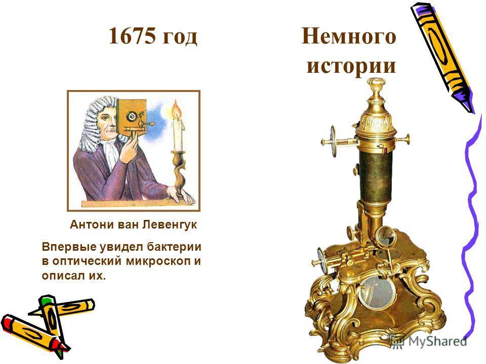 1675 год Немного истории Впервые увидел бактерии в оптический микроскоп и описал их. Антони ван Левенгук