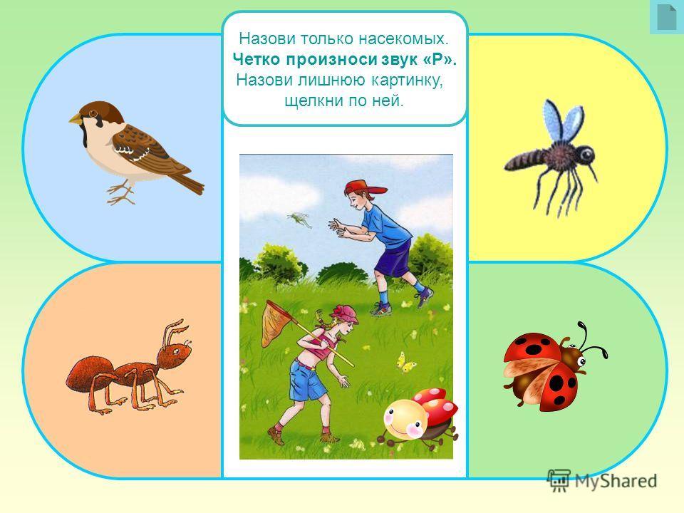 Назови только насекомых. Четко произноси звук «Р». Назови лишнюю картинку, щелкни по ней.