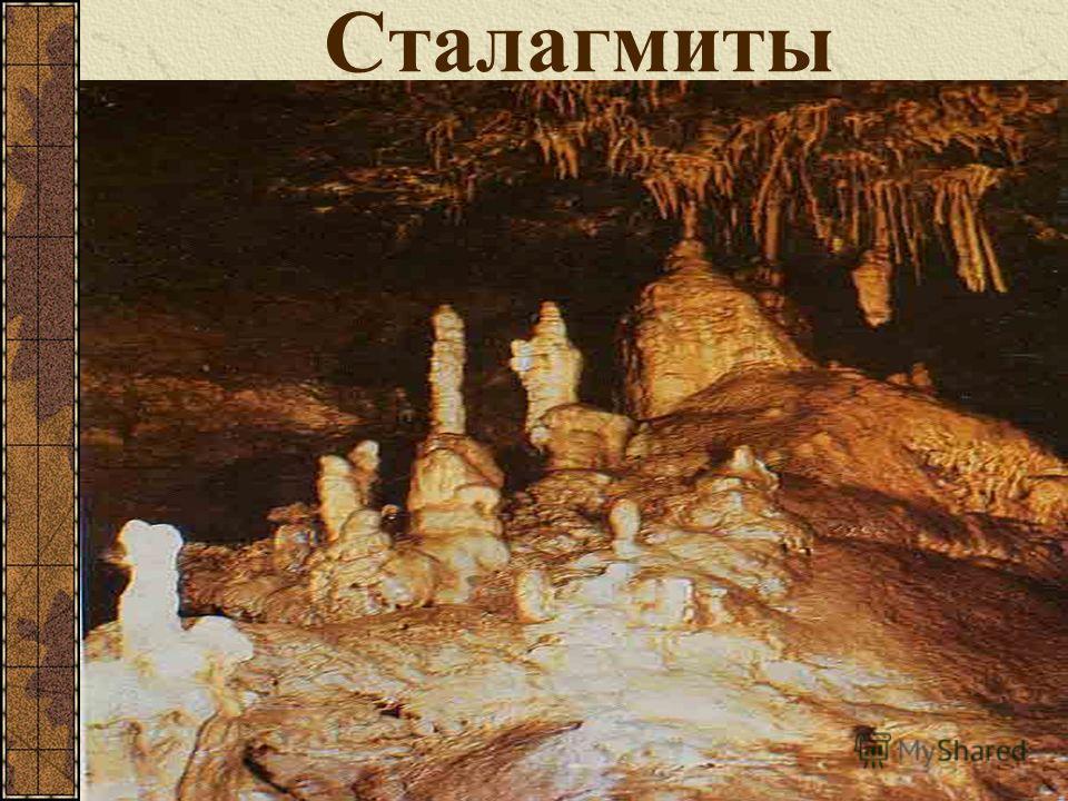 Красная пещера, или Кизил-Коба, самая крупная из 800 пещер Крыма. Она расположена в 3,5 км от села Перевальное в живописном урочище Кизил- Коба, которое является памятником природы и охраняется государством. Общая протяженность изученной части пещеры