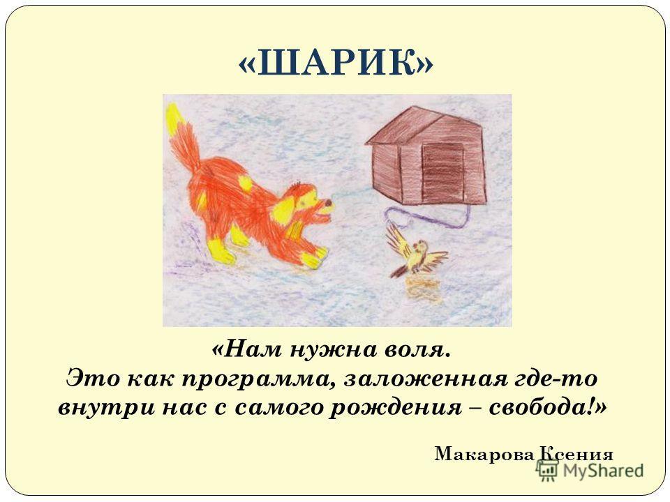 «ШАРИК» «Нам нужна воля. Это как программа, заложенная где-то внутри нас с самого рождения – свобода!» Макарова Ксения