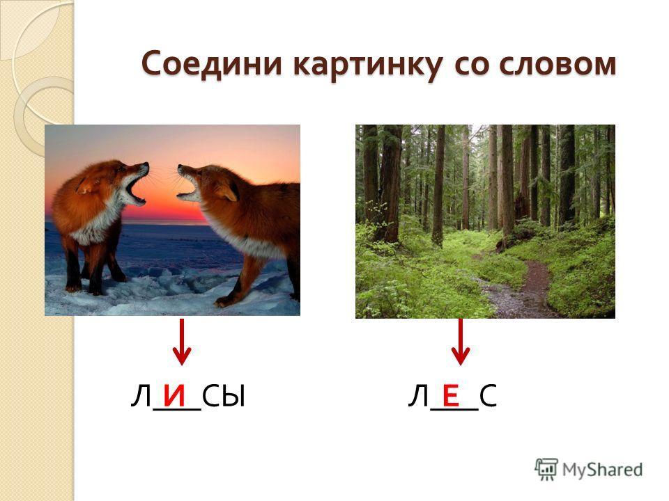 Соедини картинку со словом Л ___ СЫ Л ___ СИЕ
