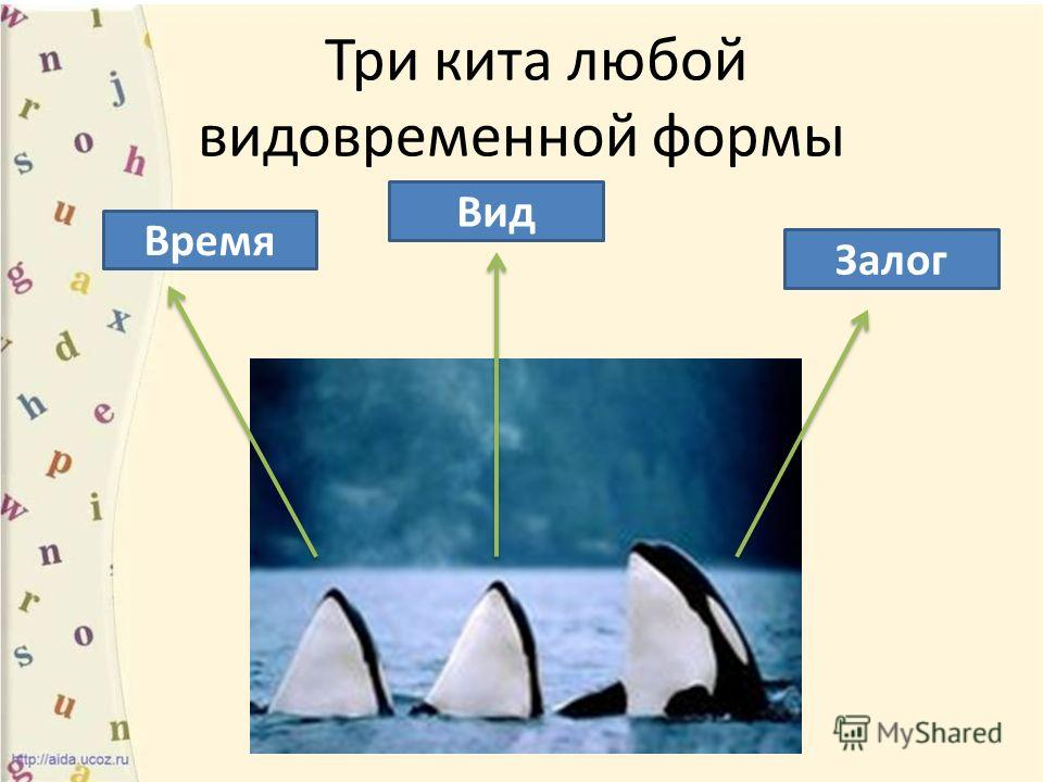 Три кита любой видовременной формы Время Вид Залог