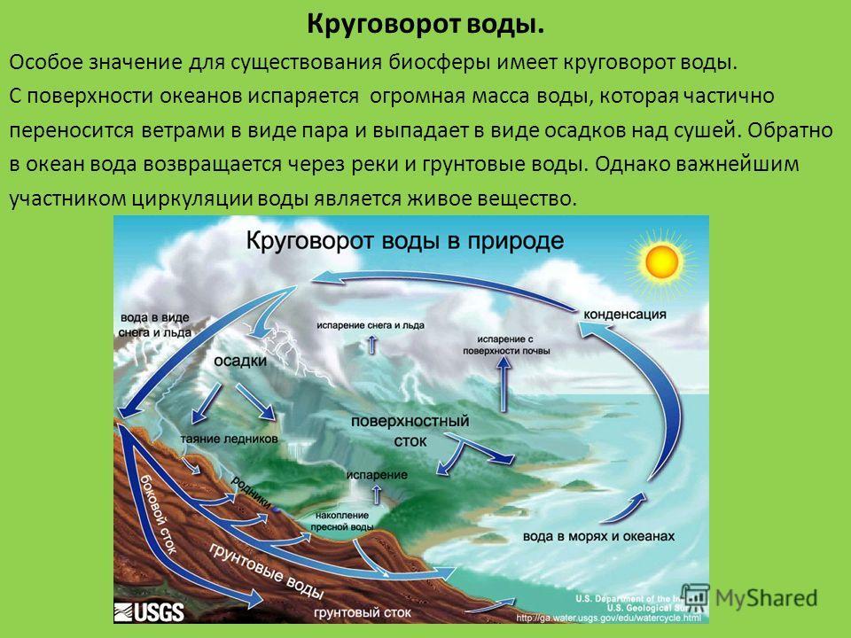 Круговорот воды. Особое значение для существования биосферы имеет круговорот воды. С поверхности океанов испаряется огромная масса воды, которая частично переносится ветрами в виде пара и выпадает в виде осадков над сушей. Обратно в океан вода возвра