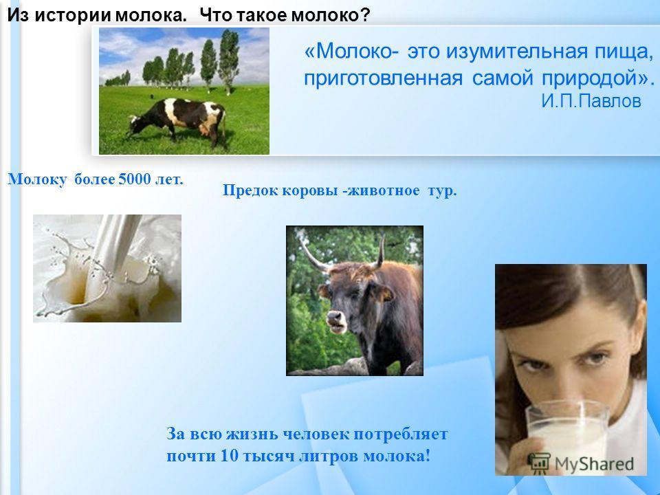 Из истории молока. Что такое молоко? «Молоко- это изумительная пища, приготовленная самой природой». И.П.Павлов Молоку более 5000 лет. Предок коровы -животное тур. За всю жизнь человек потребляет почти 10 тысяч литров молока!