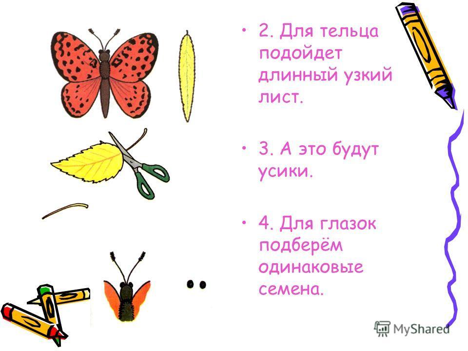 2. Для тельца подойдет длинный узкий лист. 3. А это будут усики. 4. Для глазок подберём одинаковые семена.