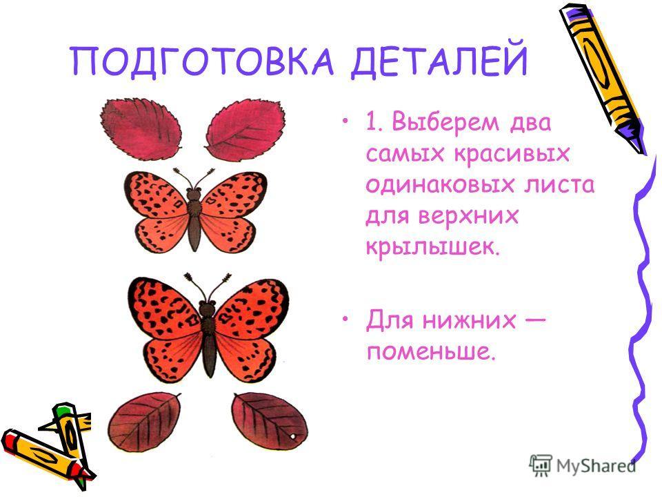 ПОДГОТОВКА ДЕТАЛЕЙ 1. Выберем два самых красивых одинаковых листа для верхних крылышек. Для нижних поменьше.