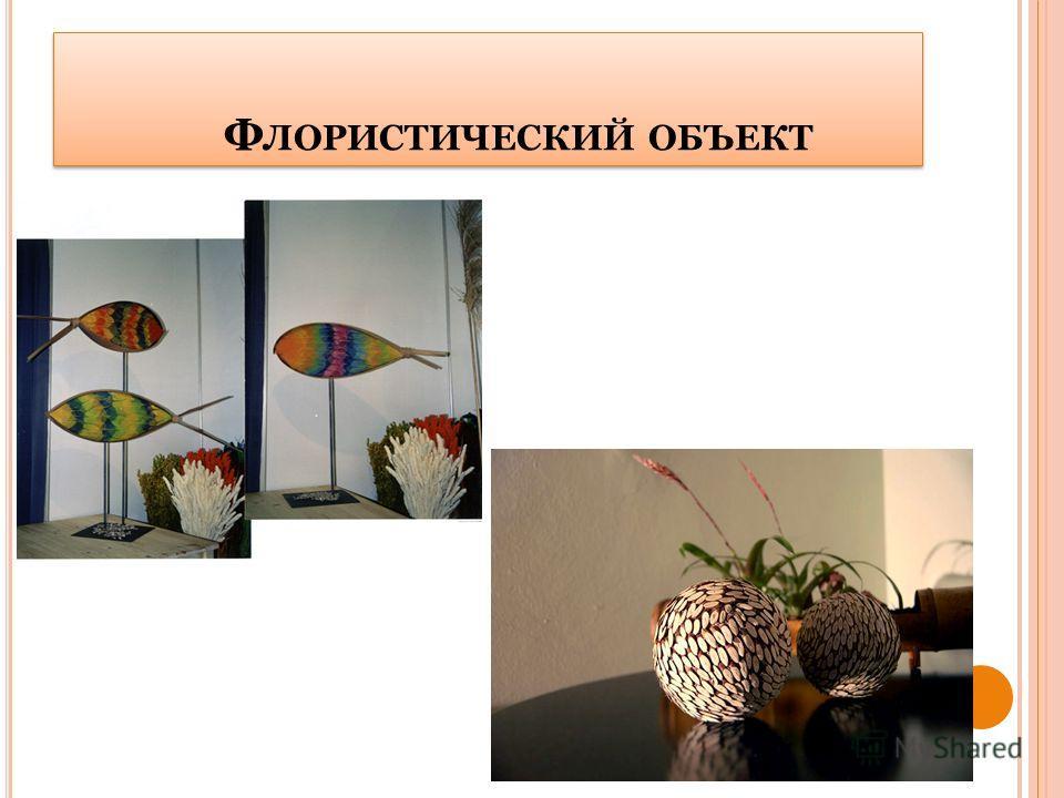 Ф ЛОРИСТИЧЕСКИЙ ОБЪЕКТ