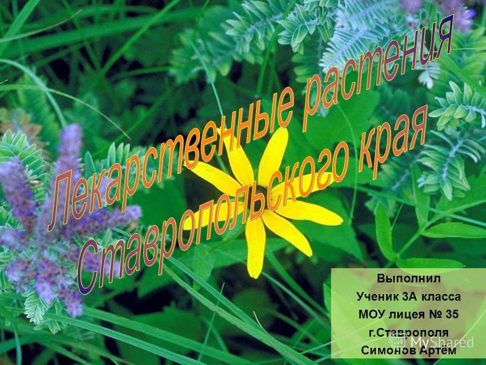 Выполнил Ученик 3А класса МОУ лицея 35 г.Ставрополя Симонов Артём
