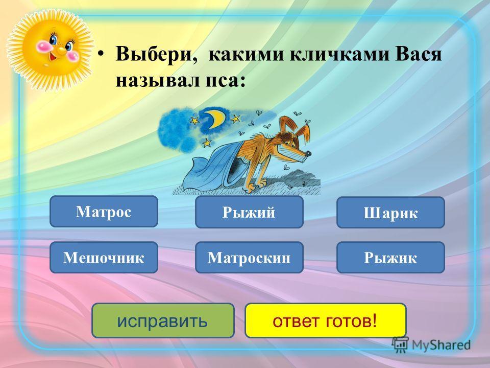 Рыжий пёс Рыжий кот Пара «поросёнков» Кто оказался в мешке у Васи?