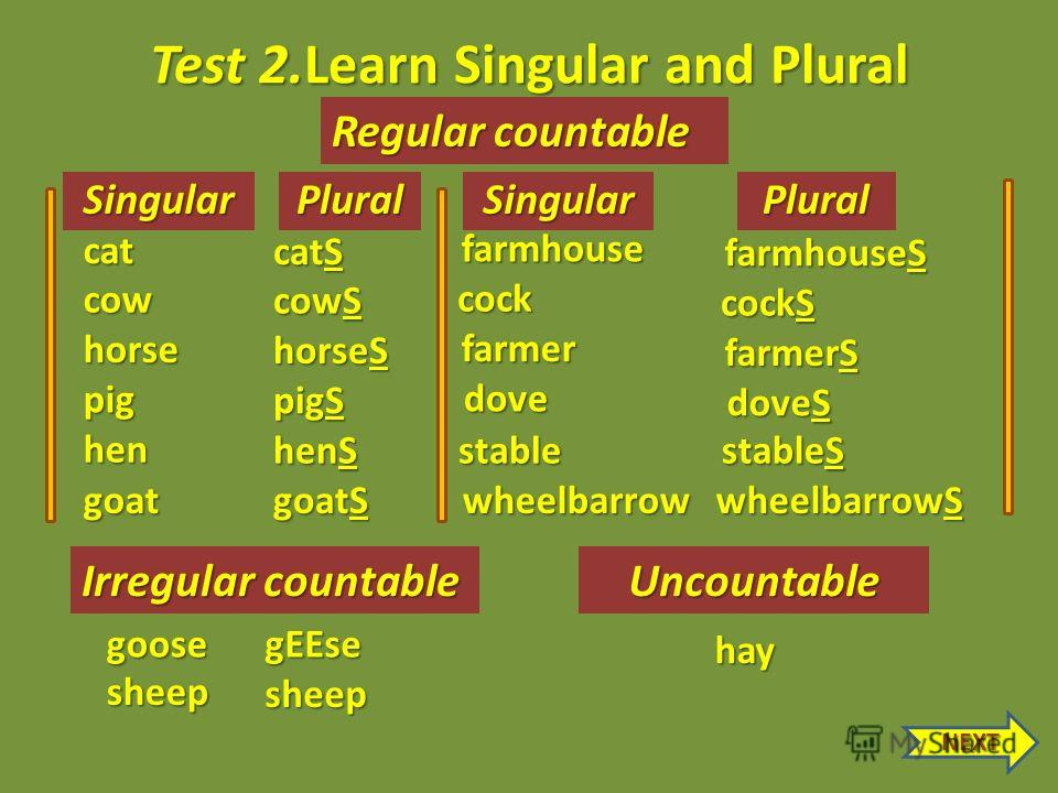 Test 2.Learn Singular and Plural SingularPlural gEEsegoose Irregular countable sheep sheep Uncountable Regular countable hay cat pig cow horse hen farmhouse goat cock farmer stable dove wheelbarrow catS pigS cowS horseS henS goatS farmhouseS cockS fa