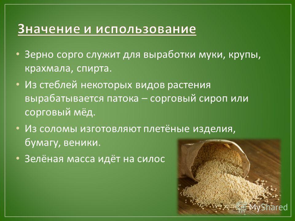 Зерно сорго служит для выработки муки, крупы, крахмала, спирта. Из стеблей некоторых видов растения вырабатывается патока – сорговый сироп или сорговый мёд. Из соломы изготовляют плетёные изделия, бумагу, веники. Зелёная масса идёт на силос
