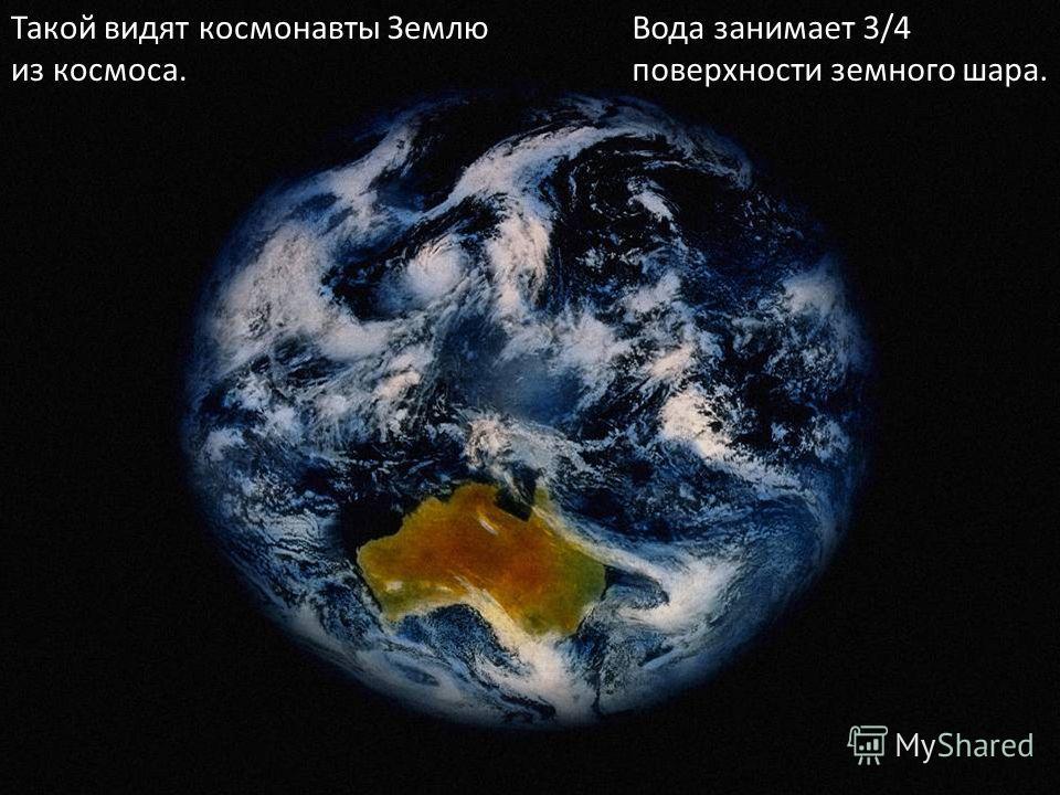 Такой видят космонавты Землю из космоса. Вода занимает 3/4 поверхности земного шара.