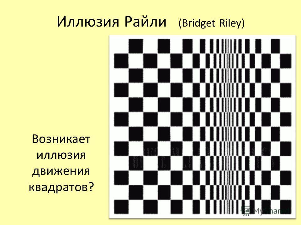 Иллюзия Райли (Bridget Riley) Возникает иллюзия движения квадратов?