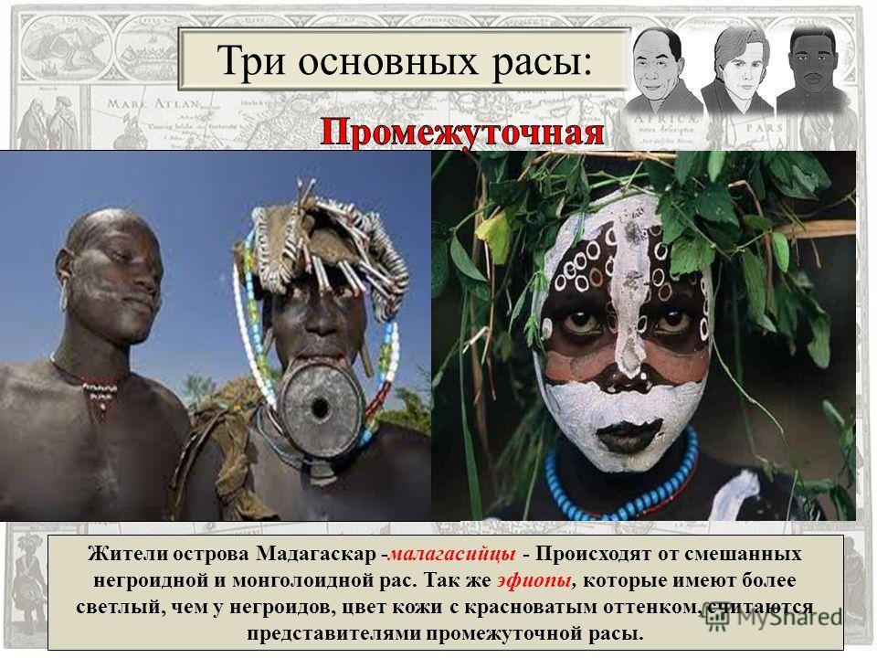 Три основных расы: Жители острова Мадагаскар -малагасийцы - Происходят от смешанных негроидной и монголоидной рас. Так же эфиопы, которые имеют более светлый, чем у негроидов, цвет кожи с красноватым оттенком, считаются представителями промежуточной