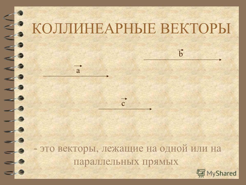 КОЛЛИНЕАРНЫЕ ВЕКТОРЫ - это векторы, лежащие на одной или на параллельных прямых а b c