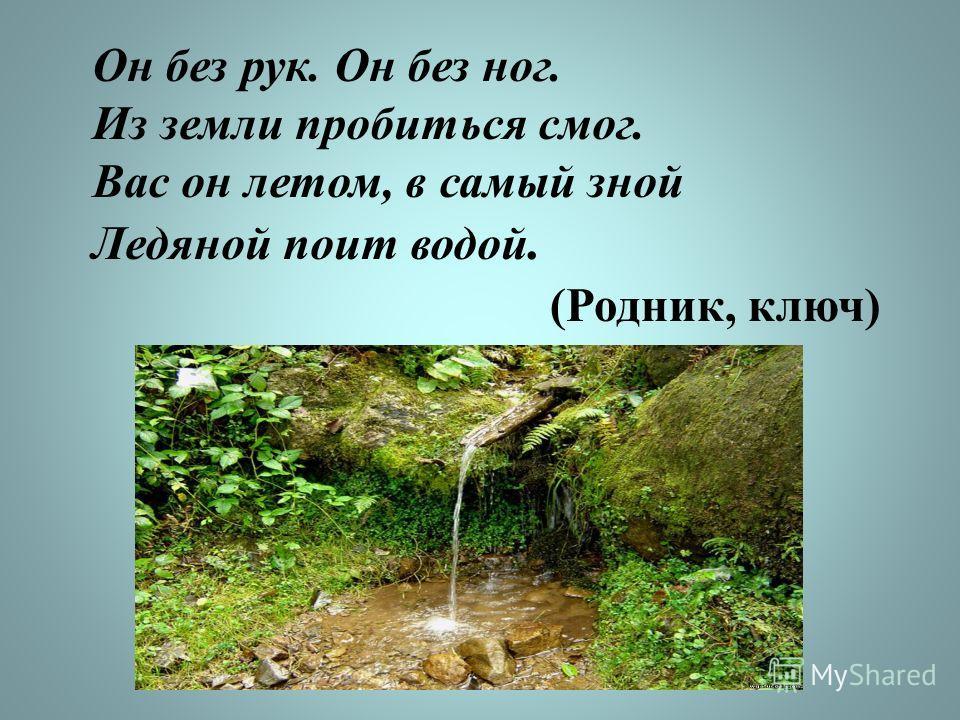 Он без рук. Он без ног. Из земли пробиться смог. Вас он летом, в самый зной Ледяной поит водой. (Родник, ключ)