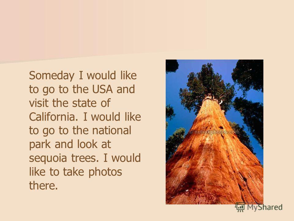Someday I would like to go to the USA and visit the state of California. I would like to go to the national park and look at sequoia trees. I would like to take photos there.