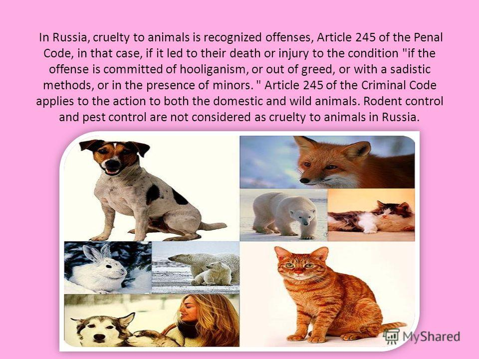 In Russia, cruelty to animals is recognized offenses, Article 245 of the Penal Code, in that case, if it led to their death or injury to the condition