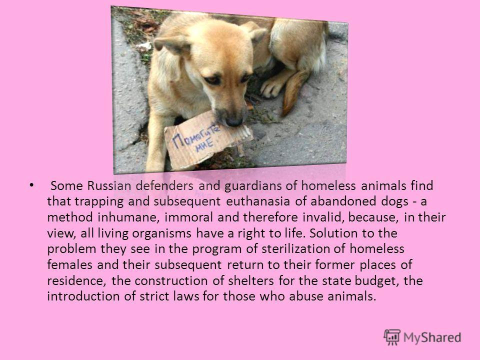 Some Russian defenders and guardians of homeless animals find that trapping and subsequent euthanasia of abandoned dogs - a method inhumane, immoral and therefore invalid, because, in their view, all living organisms have a right to life. Solution to
