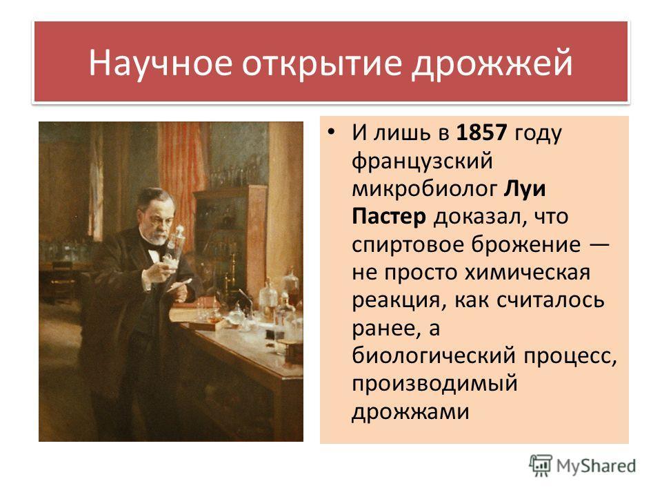 Научное открытие дрожжей И лишь в 1857 году французский микробиолог Луи Пастер доказал, что спиртовое брожение не просто химическая реакция, как считалось ранее, а биологический процесс, производимый дрожжами