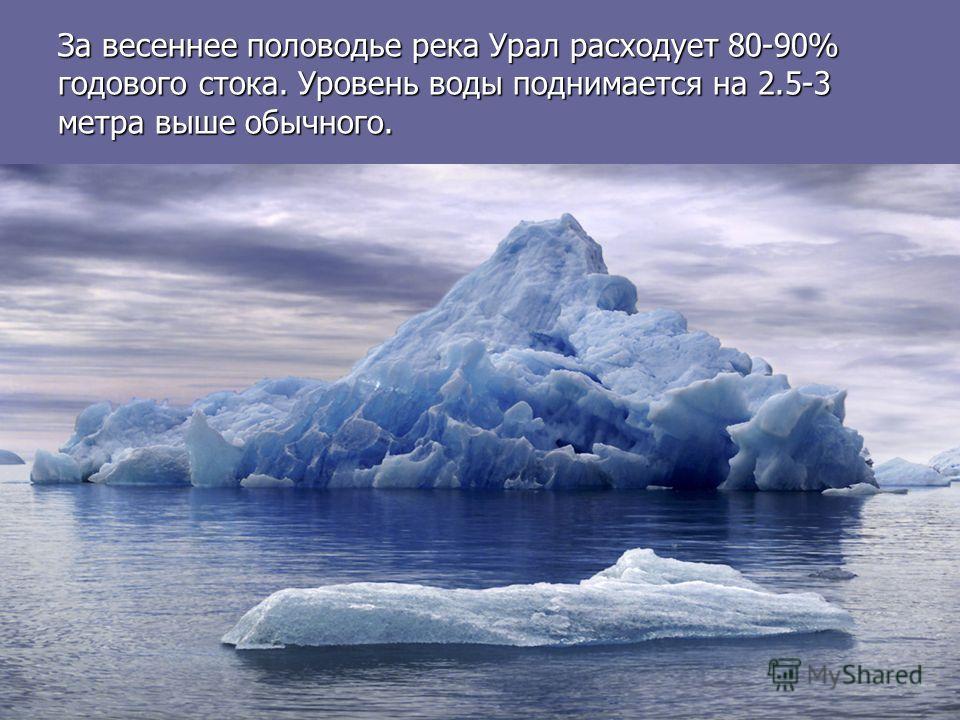 За весеннее половодье река Урал расходует 80-90% годового стока. Уровень воды поднимается на 2.5-3 метра выше обычного.