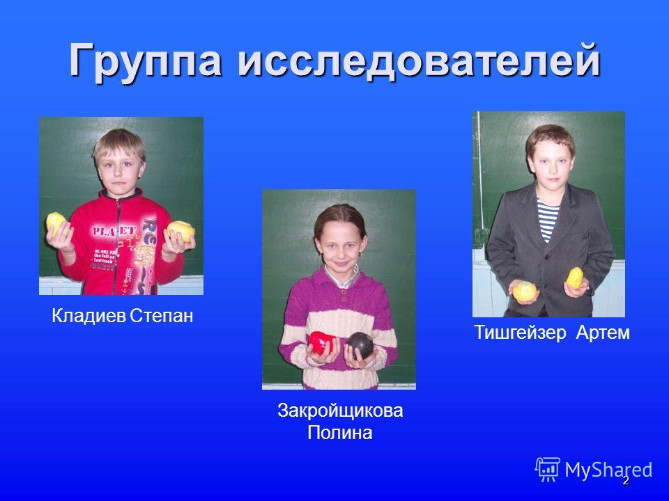 2 Группа исследователей Закройщикова Полина Кладиев Степан Тишгейзер Артем