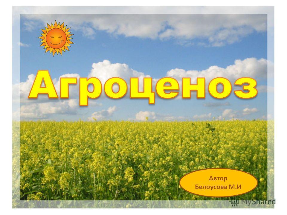 Автор Белоусова М.И