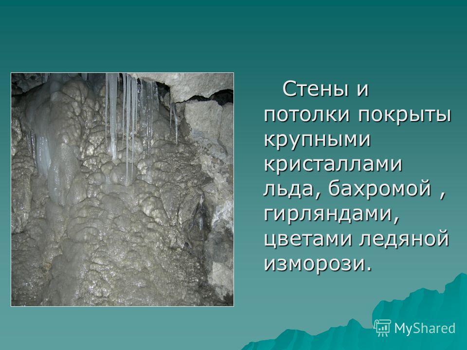 Стены и потолки покрыты крупными кристаллами льда, бахромой, гирляндами, цветами ледяной изморози. Стены и потолки покрыты крупными кристаллами льда, бахромой, гирляндами, цветами ледяной изморози.