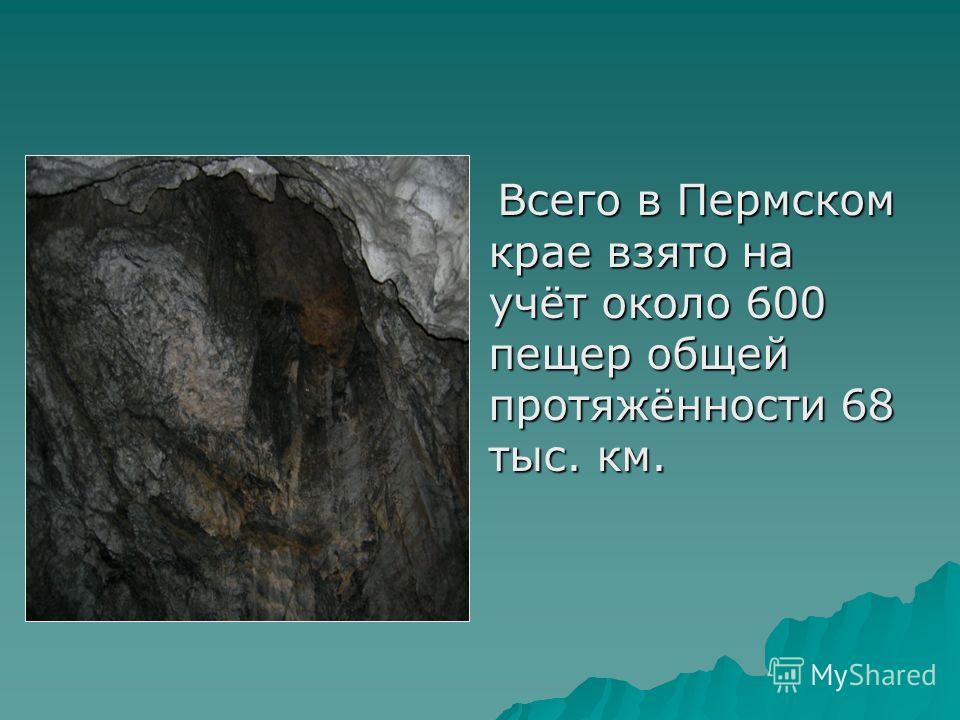 Всего в Пермском крае взято на учёт около 600 пещер общей протяжённости 68 тыс. км. Всего в Пермском крае взято на учёт около 600 пещер общей протяжённости 68 тыс. км.