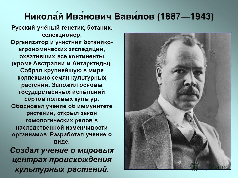 Никола́й Ива́нович Вави́лов (18871943) Русский учёный-генетик, ботаник, селекционер. Организатор и участник ботанико- агрономических экспедиций, охвативших все континенты (кроме Австралии и Антарктиды). Собрал крупнейшую в мире коллекцию семян культу