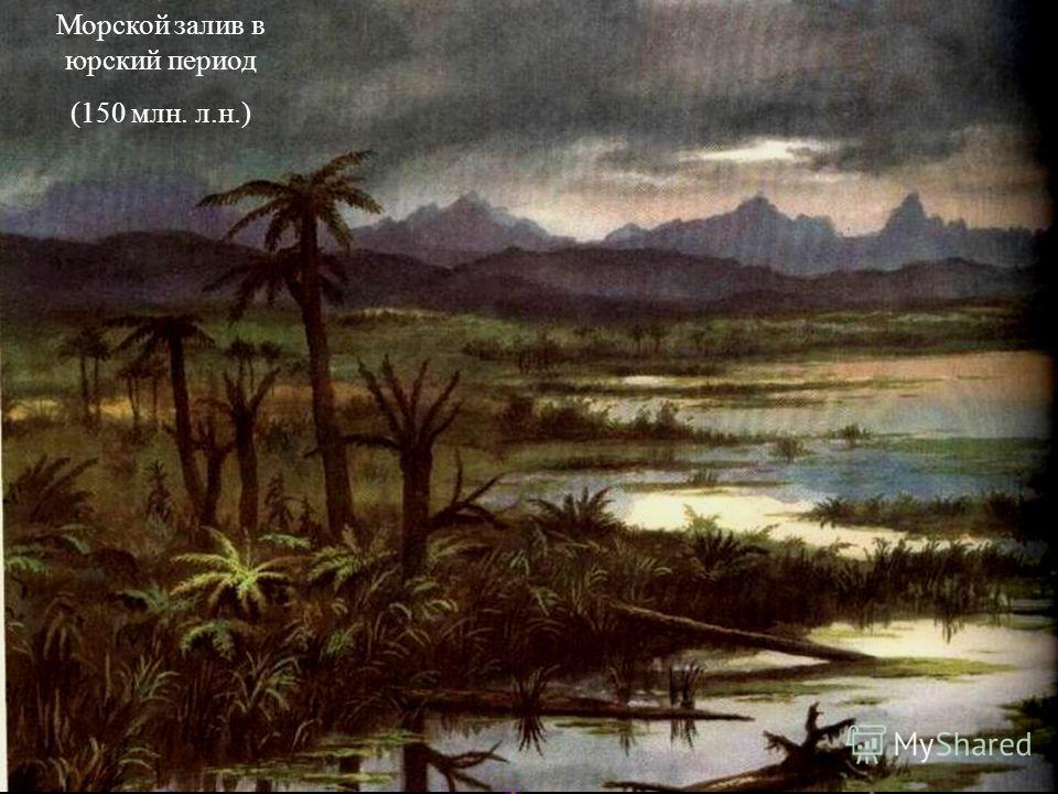 Морской залив в юрский период (150 млн. л.н.)