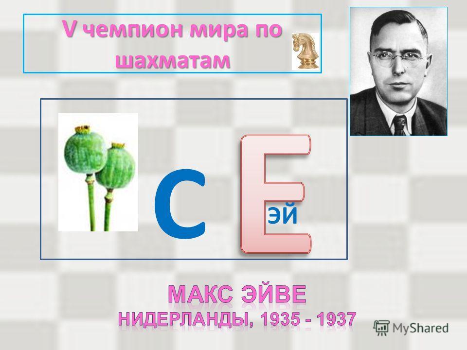 V чемпион мира по шахматам С ЭЙ