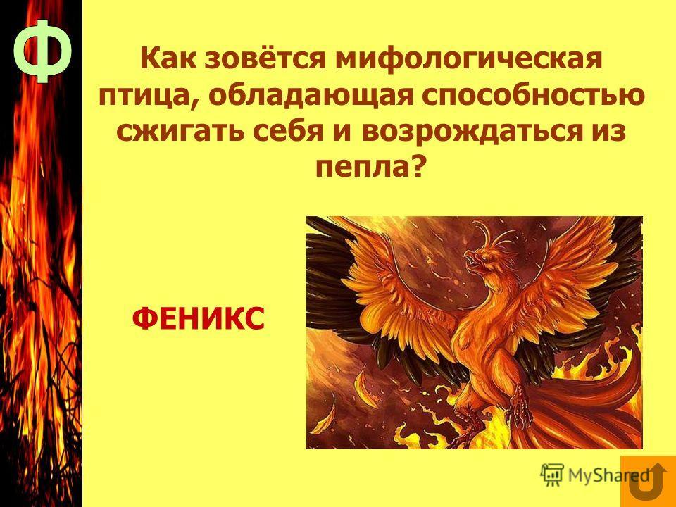 Как зовётся мифологическая птица, обладающая способностью сжигать себя и возрождаться из пепла? ФЕНИКС