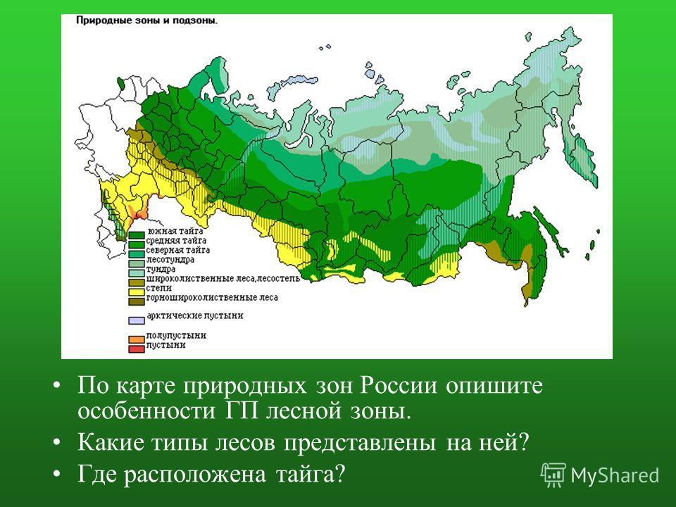 По карте природных зон России опишите особенности ГП лесной зоны. Какие типы лесов представлены на ней? Где расположена тайга?