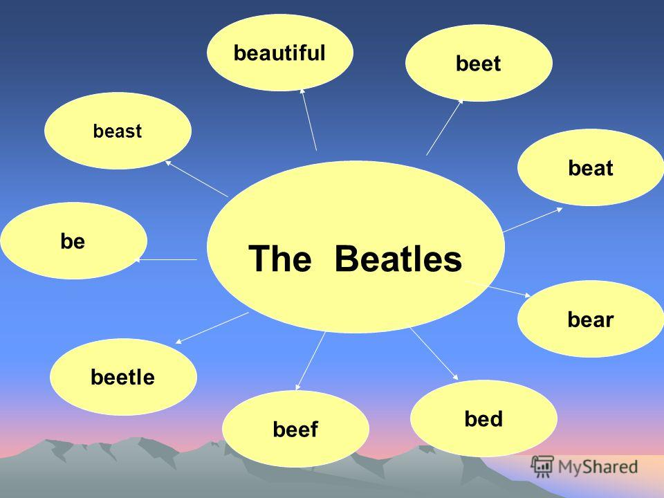 The Beatles beautiful beet beast be beat bear bed beef beetle