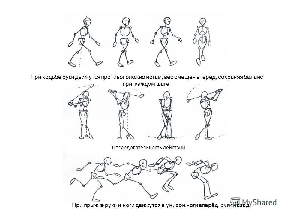 При ходьбе руки движутся противоположно ногам, вес смещен вперёд, сохраняя баланс при каждом шаге. Последовательность действий При прыжке руки и ноги движутся в унисон,ноги вперёд, руки назад.