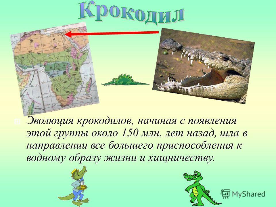Эволюция крокодилов, начиная с появления этой группы около 150 млн. лет назад, шла в направлении все большего приспособления к водному образу жизни и хищничеству. Эволюция крокодилов, начиная с появления этой группы около 150 млн. лет назад, шла в на