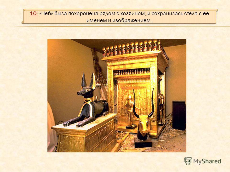 10. 10. «Неб» была похоронена рядом с хозяином, и сохранилась стела с ее именем и изображением. 10. 10. «Неб» была похоронена рядом с хозяином, и сохранилась стела с ее именем и изображением.