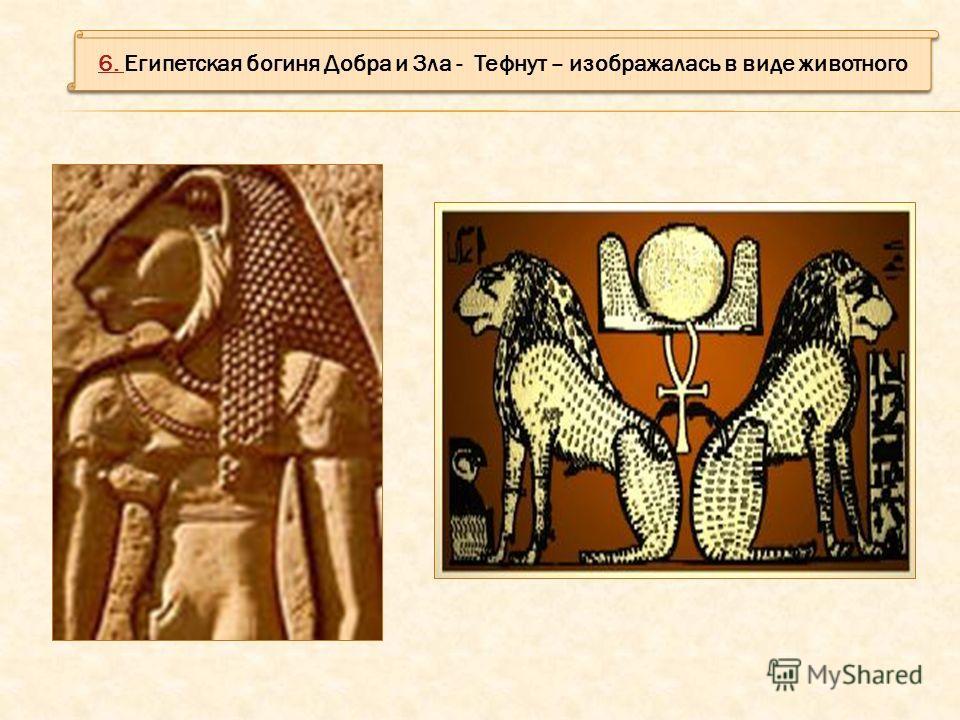 6. 6. Египетская богиня Добра и Зла - Тефнут – изображалась в виде животного 6. 6. Египетская богиня Добра и Зла - Тефнут – изображалась в виде животного