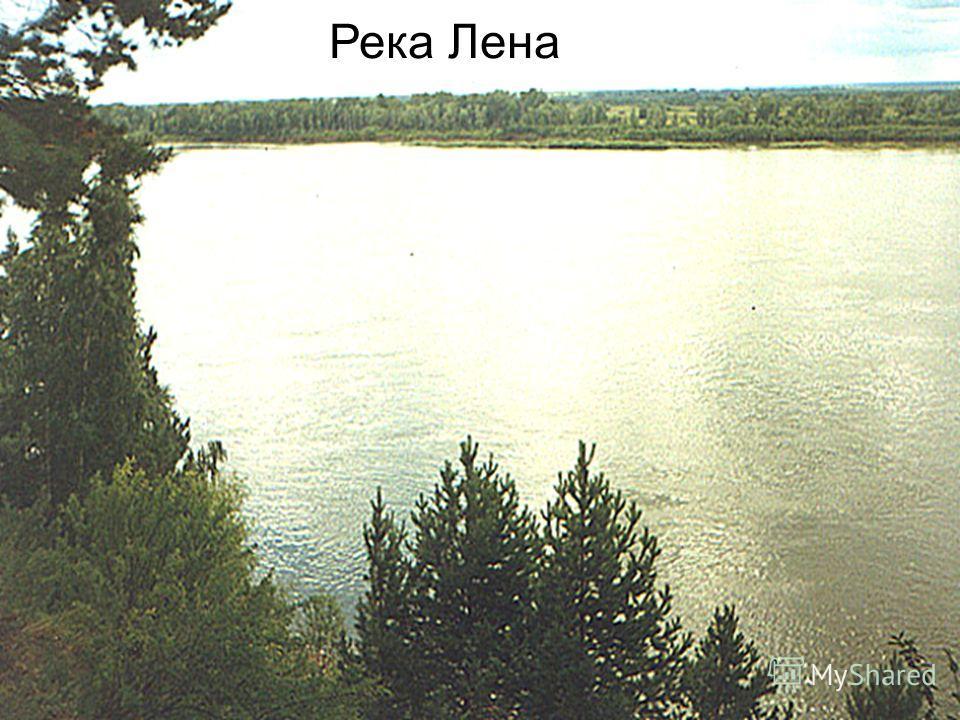 РЕКИ Анадырь, Камчатка, Лена, Колыма, Амур(два половодья - весеннее и летнее) с притоками - Зея, Бурея, Уссури. Озеро - Ханка. Вывод: хорошо обеспечен водными ресурсами, но используются они сезонно!