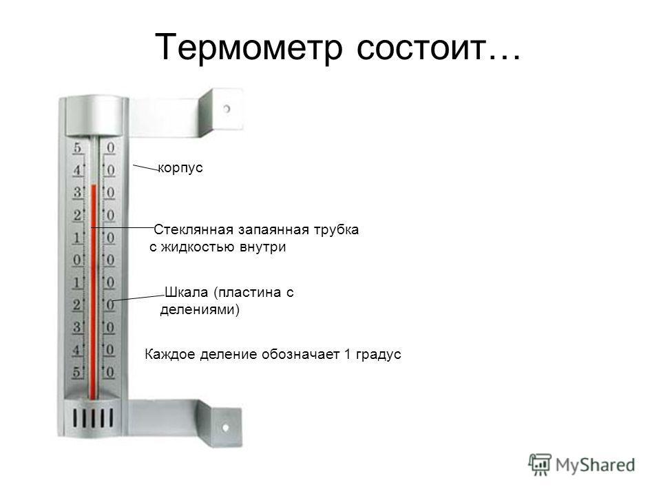Термометр состоит… корпус Шкала (пластина с делениями) Стеклянная запаянная трубка с жидкостью внутри Каждое деление обозначает 1 градус
