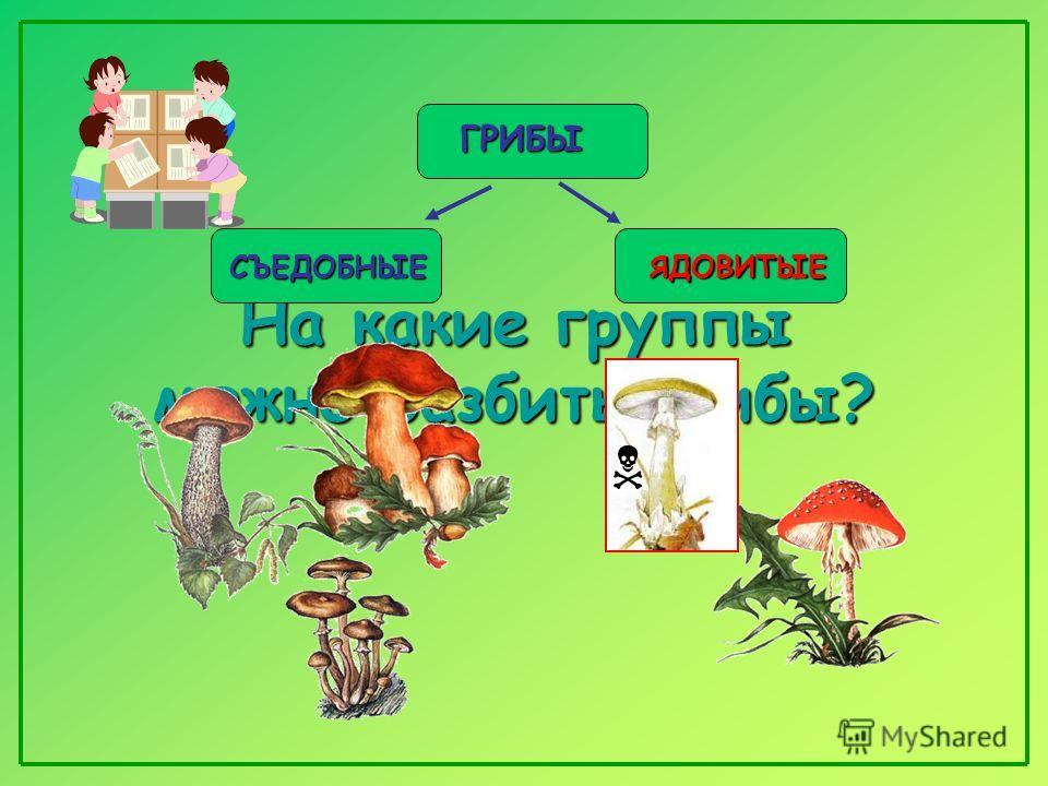 «Всякий гриб в руки берут, да не всякий в кузовок кладут»? кладут»?
