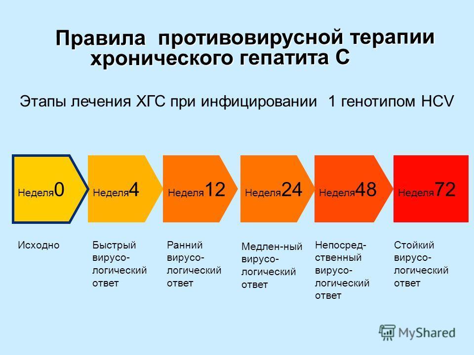 Правила противовирусной терапии хронического гепатита С Правила противовирусной терапии хронического гепатита С ИсходноБыстрый вирусо- логический ответ Ранний вирусо- логический ответ Непосред- ственный вирусо- логический ответ Стойкий вирусо- логиче