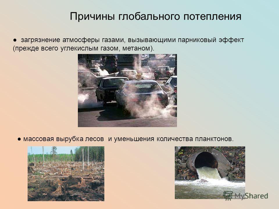 Причины глобального потепления загрязнение атмосферы газами, вызывающими парниковый эффект (прежде всего углекислым газом, метаном). массовая вырубка лесов и уменьшения количества планктонов.