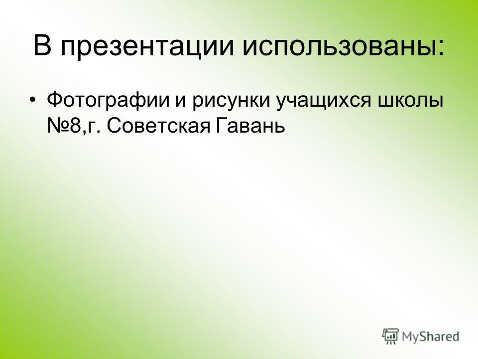 В презентации использованы: Фотографии и рисунки учащихся школы 8,г. Советская Гавань