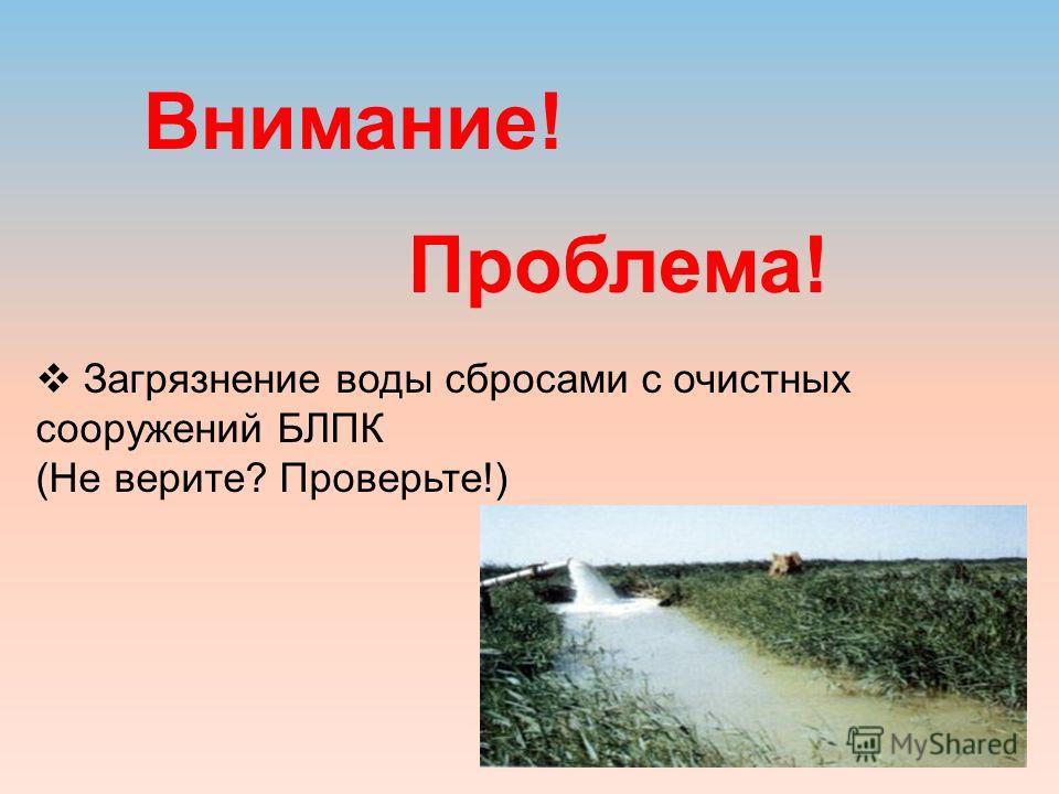 Внимание! Проблема! Загрязнение воды сбросами с очистных сооружений БЛПК (Не верите? Проверьте!)