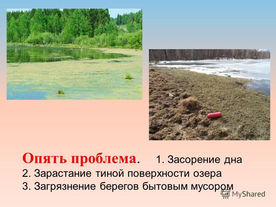 Опять проблема. 1. Засорение дна 2. Зарастание тиной поверхности озера 3. Загрязнение берегов бытовым мусором