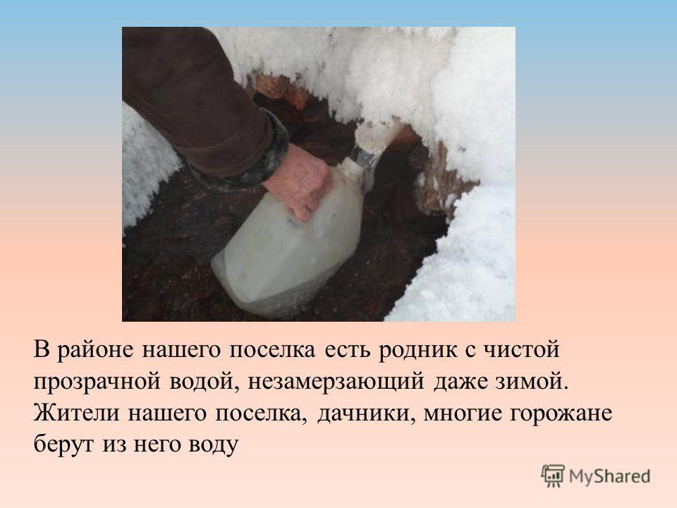 В районе нашего поселка есть родник с чистой прозрачной водой, незамерзающий даже зимой. Жители нашего поселка, дачники, многие горожане берут из него воду
